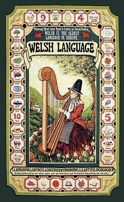 Welsh Tea Towel LANGUAGE  TT009 100% Cotton  Cymru  • 5.99£