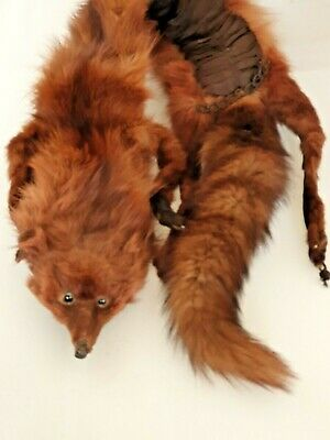 Vintage Real Red/brown Fox Fur Stole Wrap- • 28£