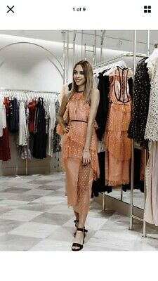 AU90 • Buy ALICE McCALL Gold Embroidered Apricot Mesh Midi Dress AU4 ORR  $450