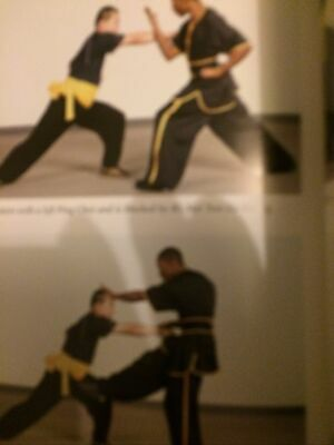 The Power Of Shaolin Kung Fu - 9780804849814 • 6.50£