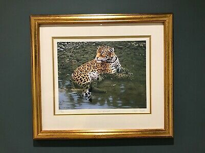 Vintage Stephen Gayford  Cool Retreat  Signed Limited Edition Framed Print  • 12.99£