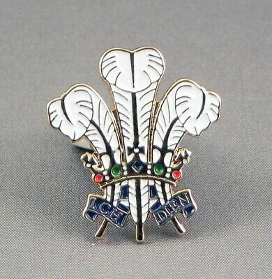 £3.49 • Buy Prince Of Wales Feathers Enamel Pin Badge - New