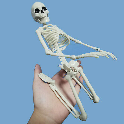 $ CDN9.51 • Buy Active Human Medical Skeleton Model Halloween Home Party Decoration Props 40cm