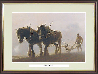 Shire Horse Ploughing  Picture  Ploughing  By John Young - NGN148 • 34£