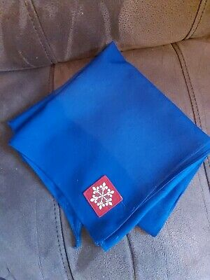 Boy Scout Neckerchief • 100£