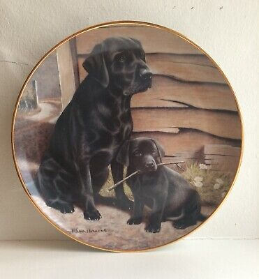 """£18 • Buy 'Like Father Like Son' Collectors 8"""" Plate By Nigel Hemming Black Labrador Dogs"""