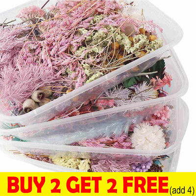 AU9.85 • Buy 1Box Real Dried Flower For Art Craft Epoxy Resin Pendant Jewellery Making DIY C2