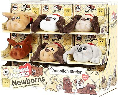£11.99 • Buy Pound Puppies Newborns - Wave 2 Dogs Trust Plush - Choose Character **new**