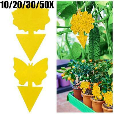 AU11.99 • Buy 50x Yellow Double-Sided Sticky Trap Insect Catcher Whitefly Thrip Fruit Fly Gnat