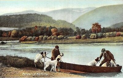 £2.35 • Buy POSTCARD  SOCIAL  HISTORY    HUNTING   Pointers  At  The  Ferry