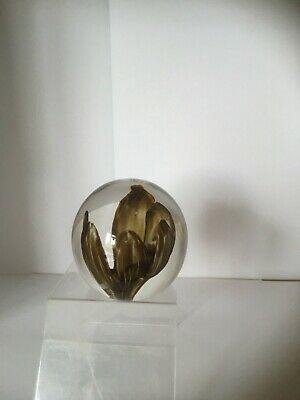 £5 • Buy Strathearn Hand Made In Scotland Brown Petals Paperweight