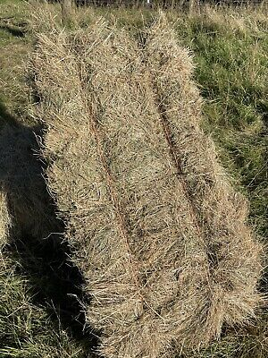 £4.50 • Buy Top Quality Horse Hay Bales