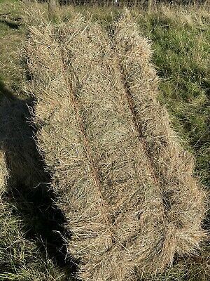 £4.50 • Buy Hay Bales, Top Quality For Horses