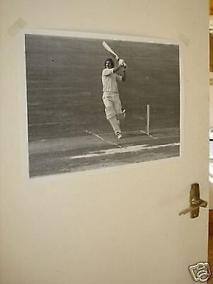 Ian Botham Cricket Legend B/W Poster Thumping Ball #4 • 5.99£
