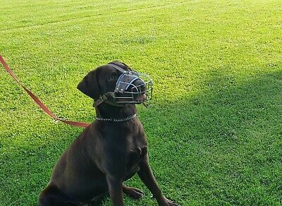 £23.50 • Buy New Strong Metal Wire Basket  Dog Muzzle For German Shepherd  Labrador