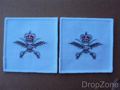 Pair Of RAF PTI Physical Training Instructor Cloth Badges / Patches - NEW • 4.99£