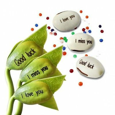 AU2.95 • Buy Magic Message Beans Plant Valentines - I LOVE YOU, GOOD LUCK, FRIENDS, THANK YOU