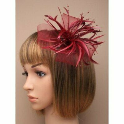 Burgundy Fascinator With Sinamay Net Loops And Feather Tendrils (beak Clip An... • 9.50£