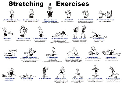 Stretching Exercises, Gym, Fitness Poster Print  A0-A1-A2-A3-A4-A5-A6-MAXI 145 • 0.99£