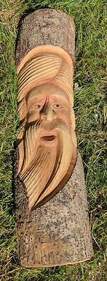 Green Man Of The Woods Hand Carved Wizard Tree Trunk Wood Man  ENT LOTR 50cm D • 19.99£