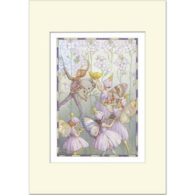 Lady's Smock Fairies - Margaret Tarrant - Medici Mounted Print • 21£
