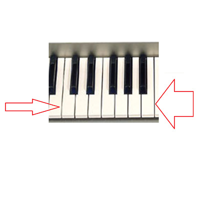 AU39.20 • Buy YAMAHA PSR 3000/1000/1100 VH1809D0 1-OCTAVE WHITE KEY SET A/B/C/D/E/F/G PARTs