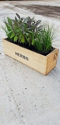 Herb Wooden Windowsill Crate/Trough/Garden/Planter • 6.99£