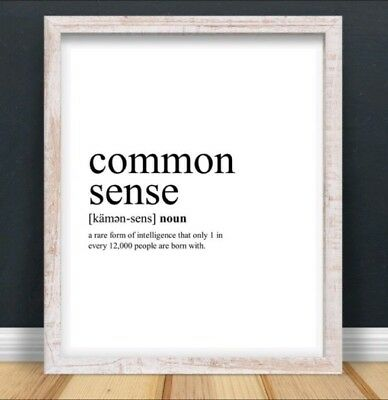 Common Sense Sarcasm Funny Typography Print Poster Unframed Home Quote Gift • 4.49£
