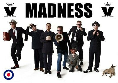 £6.99 • Buy Madness Poster - Ska Band - #1 - 80's Music Poster - A3 - 420mm X 297mm (NEW)