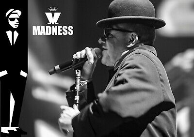 £6.99 • Buy Madness Poster Suggs - Ska Band - #20 - 80's Music- A3 - 420mm X 297mm (NEW)