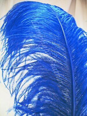 $10 • Buy Blue Ostrich Feather Plume Premium 18-24+ Inch Per Each