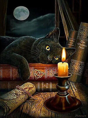 Full Diamond Painting Animal Black Cat Book Candlelight Fashion Handicraft 6072X • 6.99£