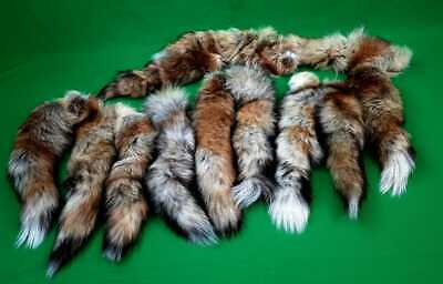 $9.90 • Buy #1 Quality XL Tanned Real Red Fox Tails/Crafts/USA Shpt Fur /Harley Parts/Purse
