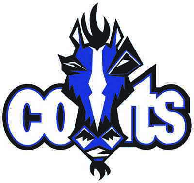 $3.97 • Buy INDIANAPOLIS COLTS Vinyl Decal / Sticker ** 5 Sizes **