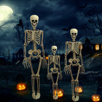 $6.99 • Buy USA Halloween Poseable Skeleton Party Prop Decor Human Anatomy Model 38*12CM