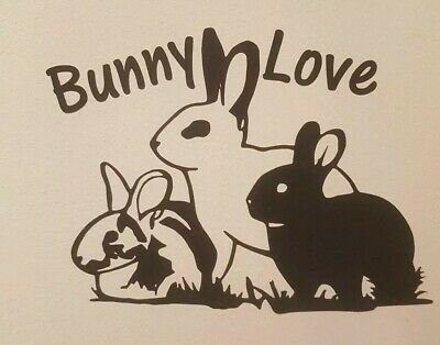 Rabbits Vinyl Sticker  Bunny Love  For Car, Wall, Laptop, Phone, Card Making Etc • 2.99£