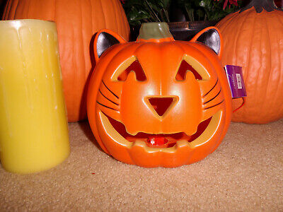 $27.99 • Buy Blow Mold Cat Pumkin New! Halloween Trick Or Treat Lighted