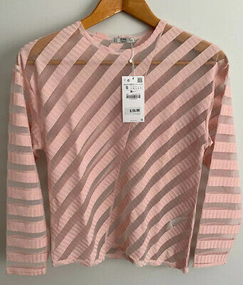 $17.85 • Buy Zara Basic Collection Womens Sheer Blouse Small Pink Professional Career Top NEW