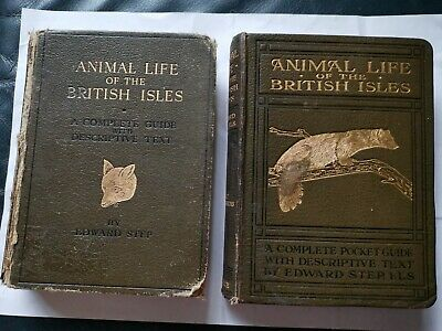 Animal Life Of The British Isles Edward Step 1929 & 1927 2x Books Hardback  • 11.99£