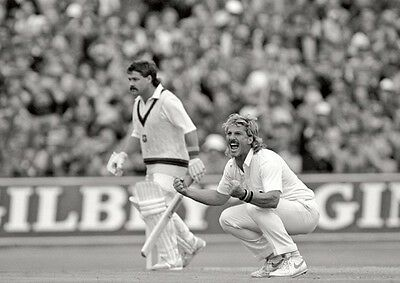 Ian Botham Cricket Legend Celebrates POSTER • 5.99£