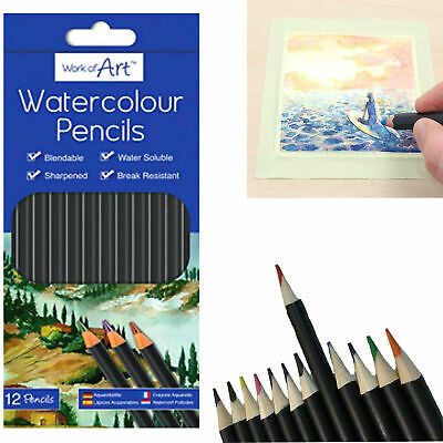 £2.89 • Buy 12 Watercolour Artist Pencils For Drawing Painting Sketching Art Water Colour UK