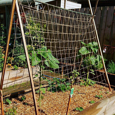£12.99 • Buy Biodegradable Natural Jute Heavy Duty Pea Bean Plan Support Netting 50 Or 100mm