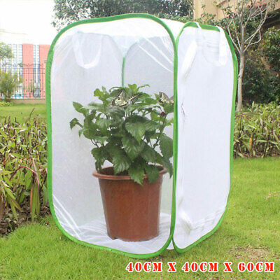 AU29.75 • Buy Insect Cage Foldable Butterfly Habitat Mesh Transparent Surface Portable Zipper