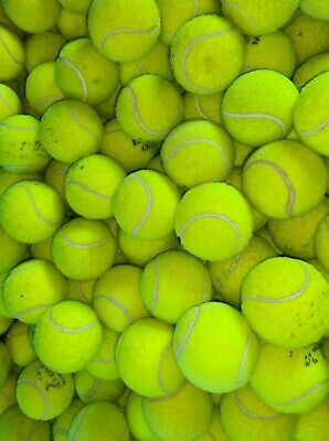Used Tennis Balls For Dogs~ 4 6 8 Or 10~ Sanitised Branded Balls~ Dog Toy / Ball • 10.95£