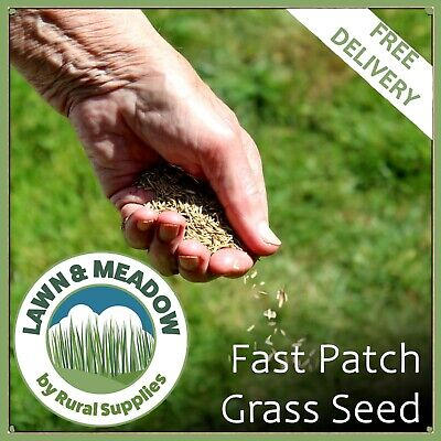 £9.99 • Buy FAST PATCH Grass Seed 1KG BAG  -QUICK RAPID REPAIR FOR TIRED LAWNS | 30m2