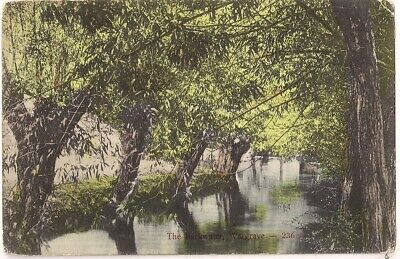 Rare Old Postcard - The Backwater - Wargrave - Berkshire C.1910 • 1.49£