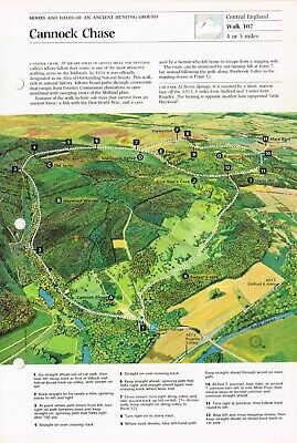 Cannock Chase Staffordshire Vintage Walking Route & Map Circa 1975 #107 • 2.49£
