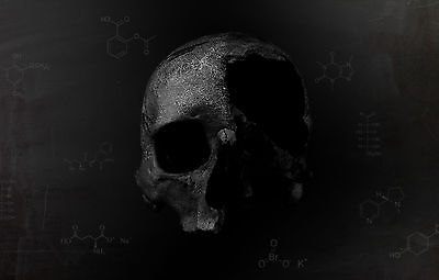 Framed Print - Gothic Human Skull With Chemistry Equations (Picture Poster Art) • 7.95£