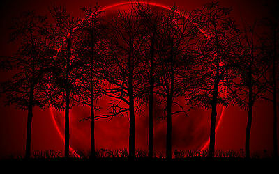 £7.95 • Buy Framed Print - Giant Red Moon Behind Dark Trees (Picture Poster Gothic Wood)