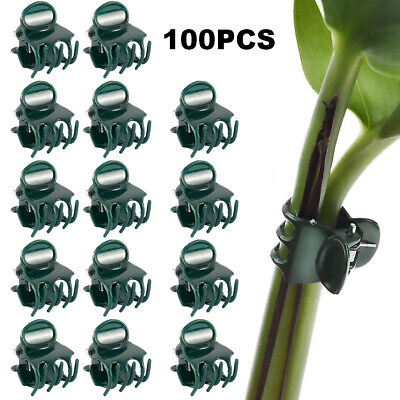 £5.59 • Buy 100X Garden Plant Clips Tomato Tie Stem Orchid Support Grow Patio Training